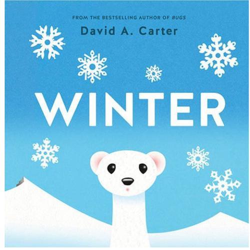 [원서] Winter: A Pop-up Book (Seasons Pop-up)