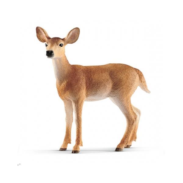 [교구] 슐라이히 - 흰꼬리 암사슴